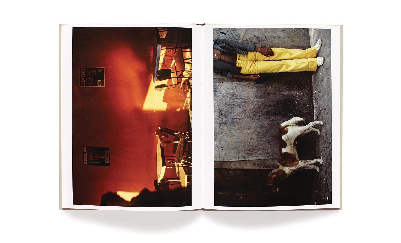 RIO-BRANCO-LE-BAL-OLIVIER-ANDREOTTI-TOLUCA-STUDIO-05.jpg